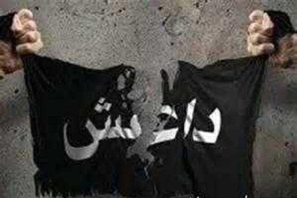 توصیه کرونایی داعش به تکفیری ها