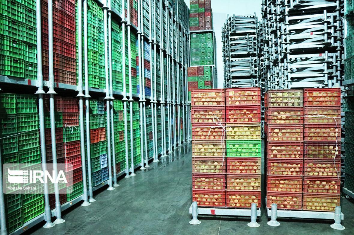 خبرنگاران راه اندازی منطقه آزاد، موثرترین راه جلوگیری از خام فروشی محصولات گلستان است