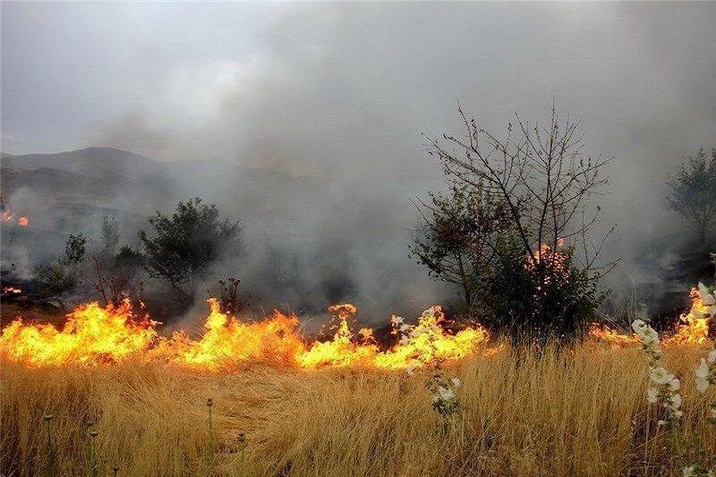 خبرنگاران آتش سوزی گسترده در اراضی ملی الموت غربی مهار شد