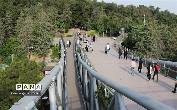 آغاز افزایش ارتفاع حفاظ پل طبیعت