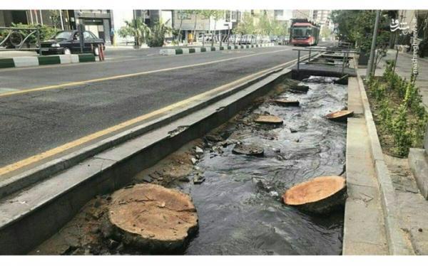 ساماندهی خیابان ولیعصر(عج) پایتخت تا خرداد 1400 برای ثبت جهانی