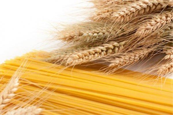 ماکارونی رژیمی با فیبرهای خوراکی محلول و نامحلول فراوری شد