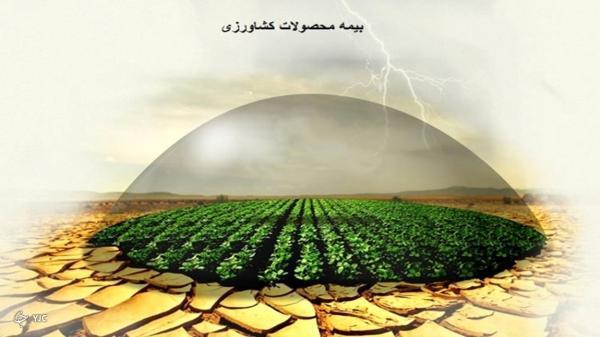 مهلت بیمه محصولات کشاورزی تا 15 اردیبهشت تمدید شد